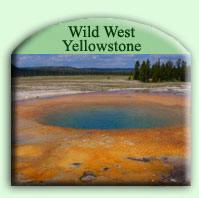 abenteuerreise-yellowstone-bev