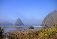 Pazifik Küste von Oregon