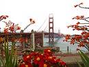 San Francisco, Monterey