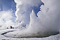 Yellowstone Winter - Geyser