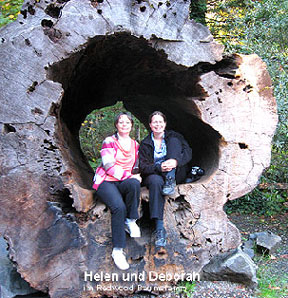 helen-deborah-redwood