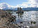 Mono Lake See