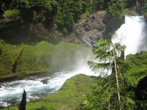Koosha Falls im Willamette National Forest