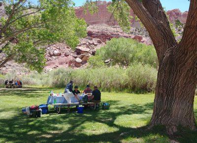 Picknick mit der Reisegruppe in Fruita, Capitol Reef NP