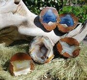 Geoden aus Oregon